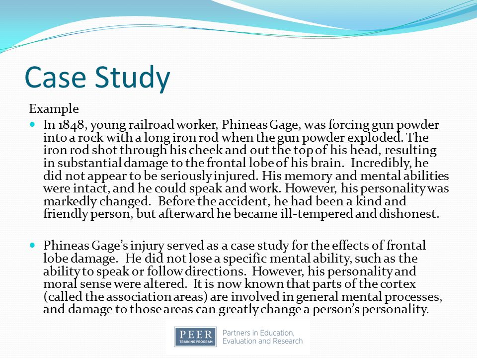 an analysis of phineas gage as a case study for a brain injury