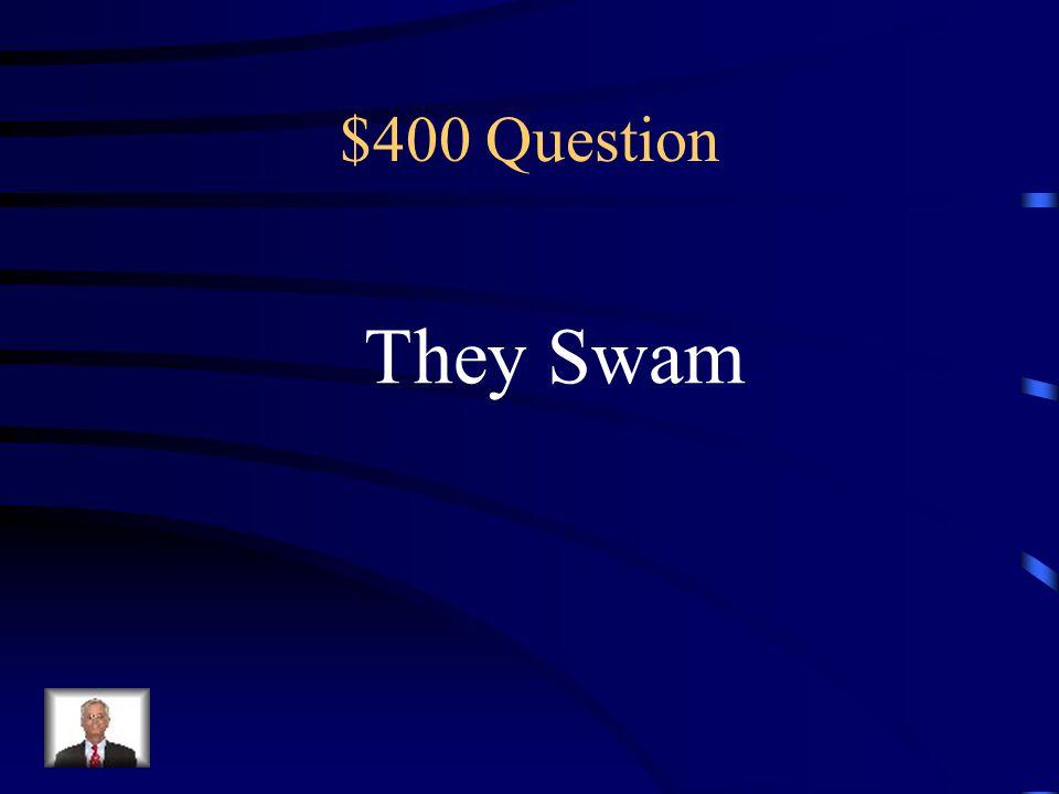$300 Answer nosotros corrimos
