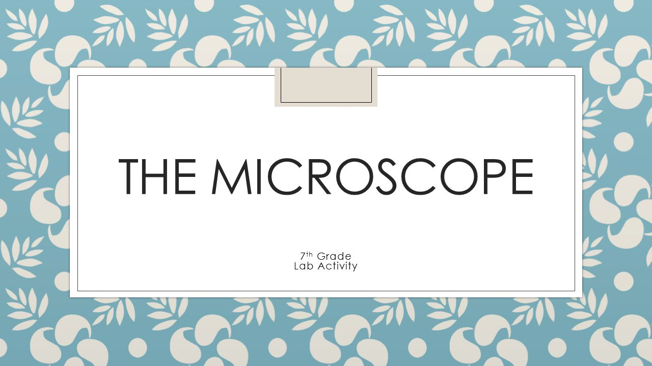 THE MICROSCOPE 7 th Grade Lab Activity