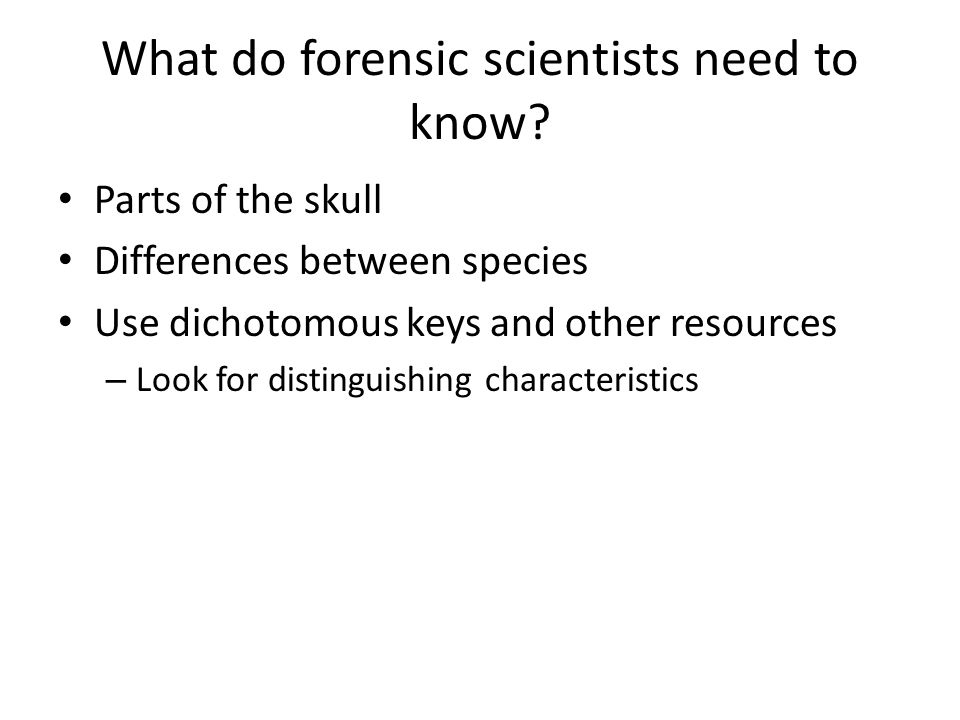 How can a skull be identified.
