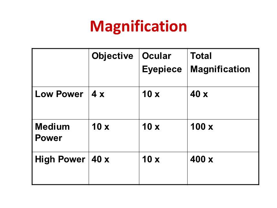 Magnification ObjectiveOcular Eyepiece Total Magnification Low Power4 x10 x40 x Medium Power 10 x 100 x High Power40 x10 x400 x