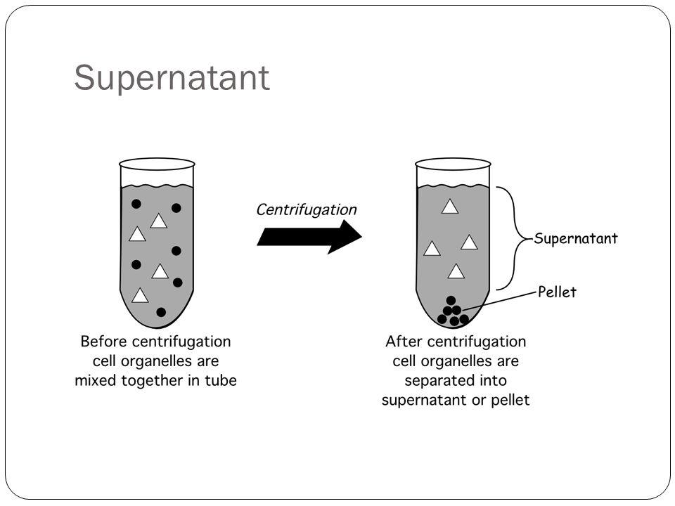Supernatant