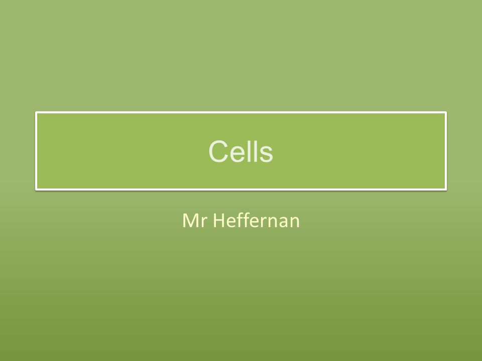 Cells Mr Heffernan