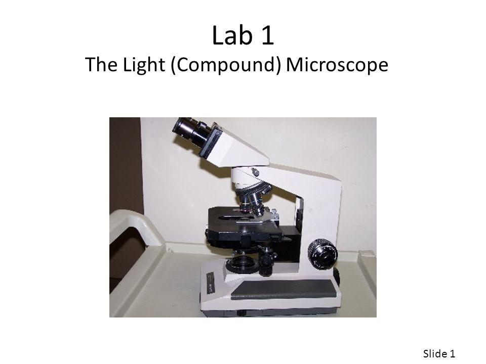 Lab 1 The Light (Compound) Microscope Slide 1