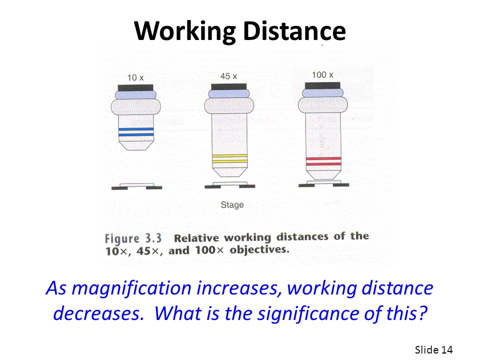 Slide 14 As magnification increases, working distance decreases.