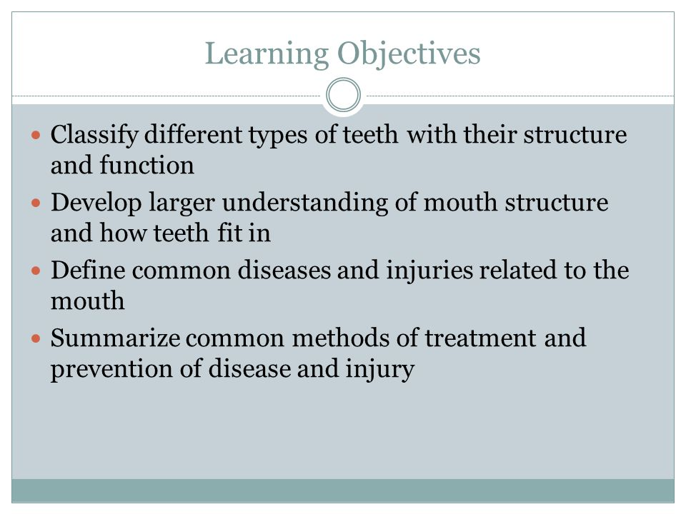 Learning Objectives Classify different types of teeth with their structure and function Develop larger understanding of mouth structure and how teeth