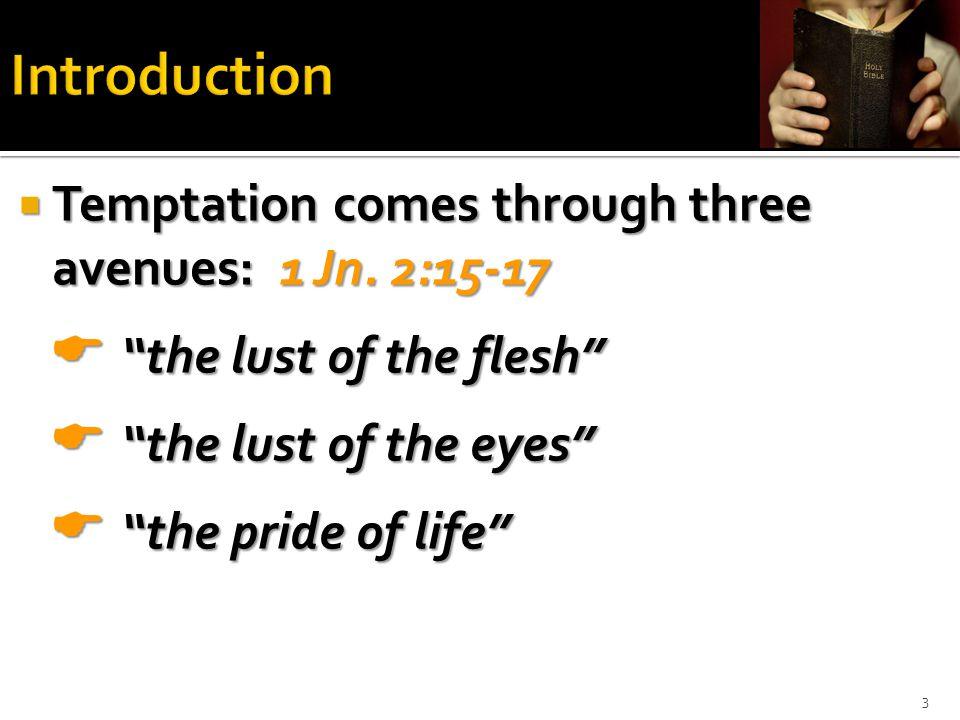  Temptation comes through three avenues: 1 Jn.