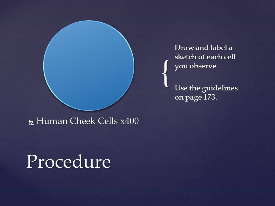{  Human Cheek Cells x400 Draw and label a sketch of each cell you observe.