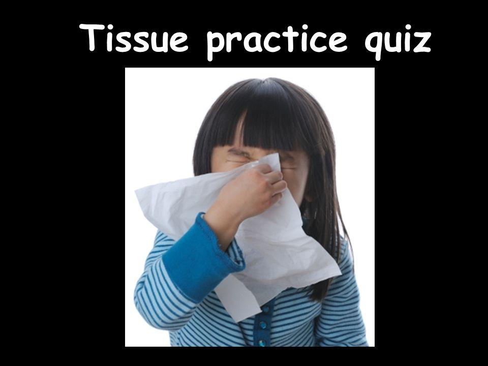Tissue practice quiz