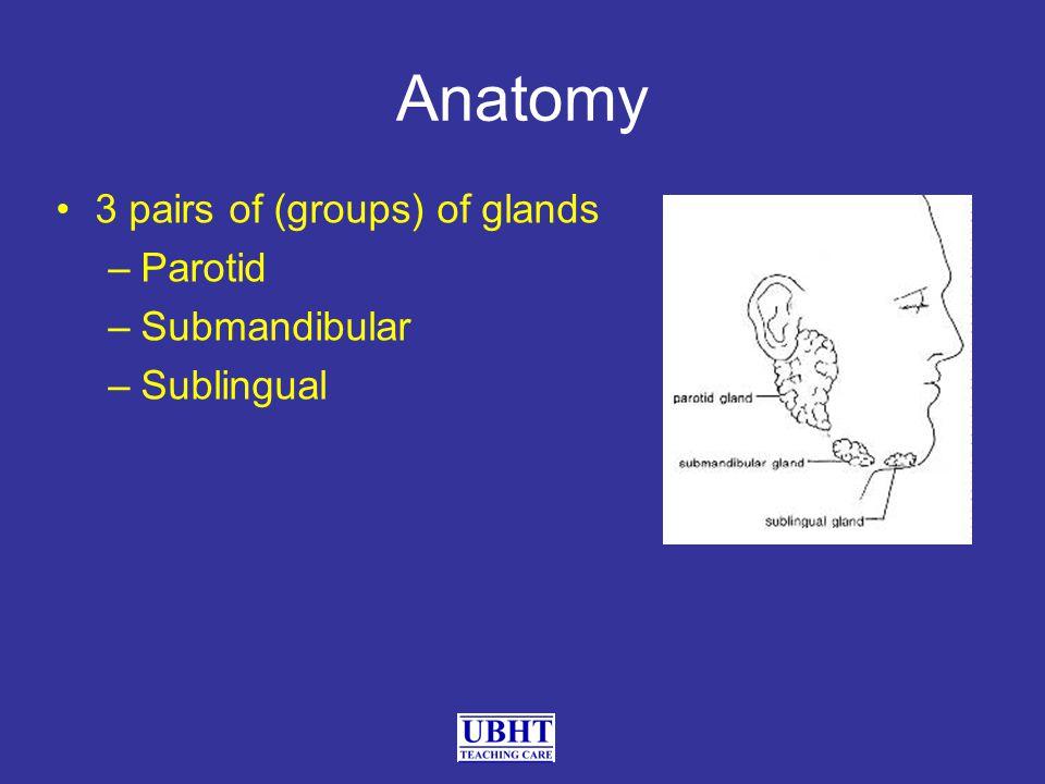 Anatomy 3 pairs of (groups) of glands –Parotid –Submandibular –Sublingual