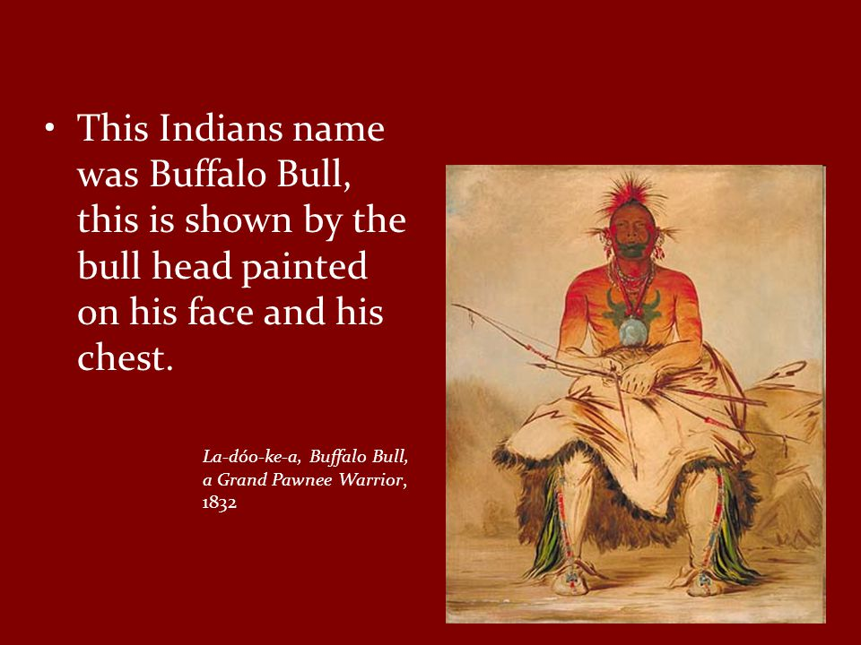 This Indians name was Buffalo Bull, this is shown by the bull head painted on his face and his chest.