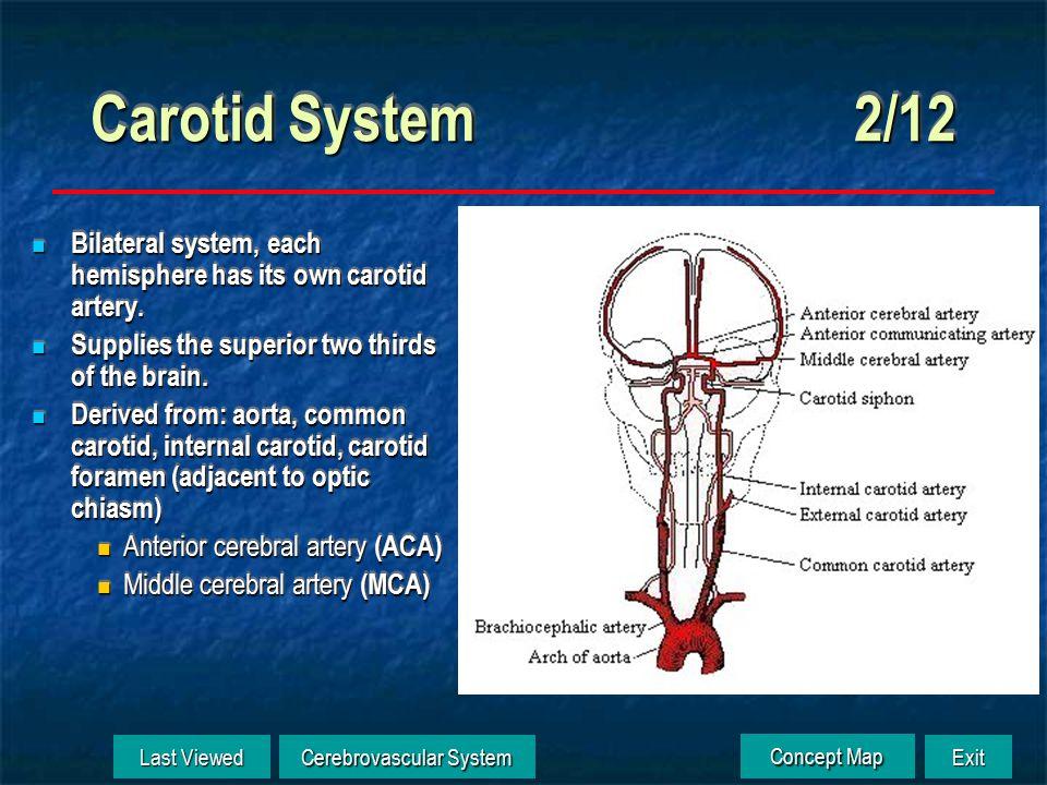 Carotid System 1/12 Click to Animate Anterior cerebral a.
