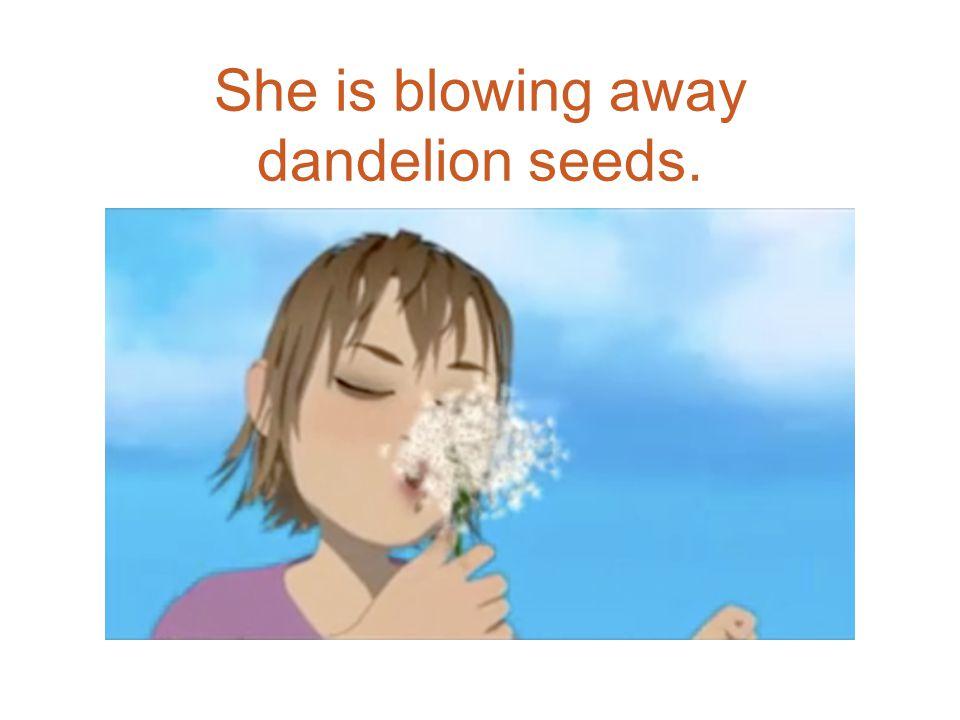 She is blowing away dandelion seeds.