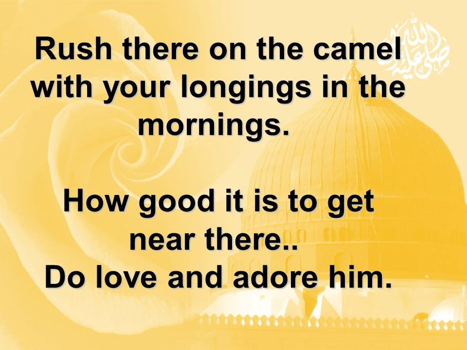Rush there on the camel with your longings in the mornings.