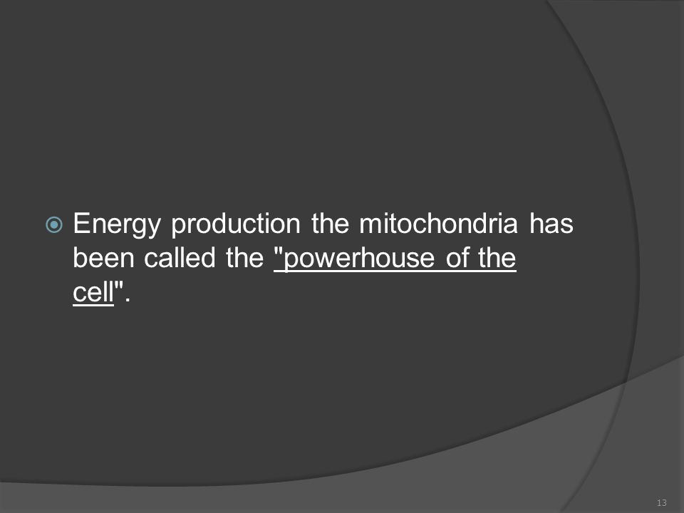  Energy production the mitochondria has been called the