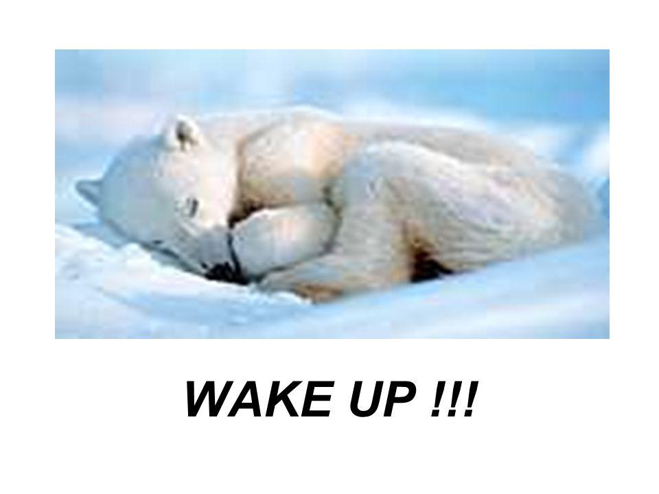 WAKE UP !!!