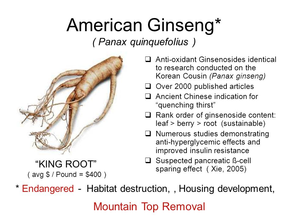 American Ginseng* ( Panax quinquefolius )  Anti-oxidant Ginsenosides identical to research conducted on the Korean Cousin (Panax ginseng)  Over 2000 published articles  Ancient Chinese indication for quenching thirst  Rank order of ginsenoside content: leaf > berry > root (sustainable)  Numerous studies demonstrating anti-hyperglycemic effects and improved insulin resistance  Suspected pancreatic ß-cell sparing effect ( Xie, 2005) KING ROOT ( avg $ / Pound = $400 ) * Endangered - Habitat destruction,, Housing development, Mountain Top Removal