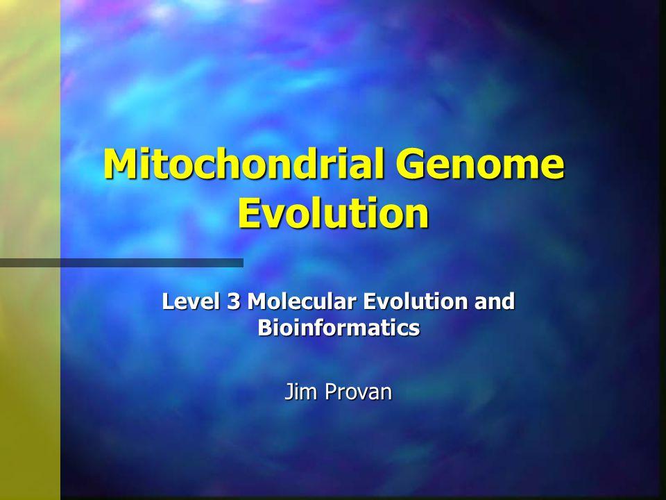 Mitochondrial Genome Evolution Level 3 Molecular Evolution and Bioinformatics Jim Provan