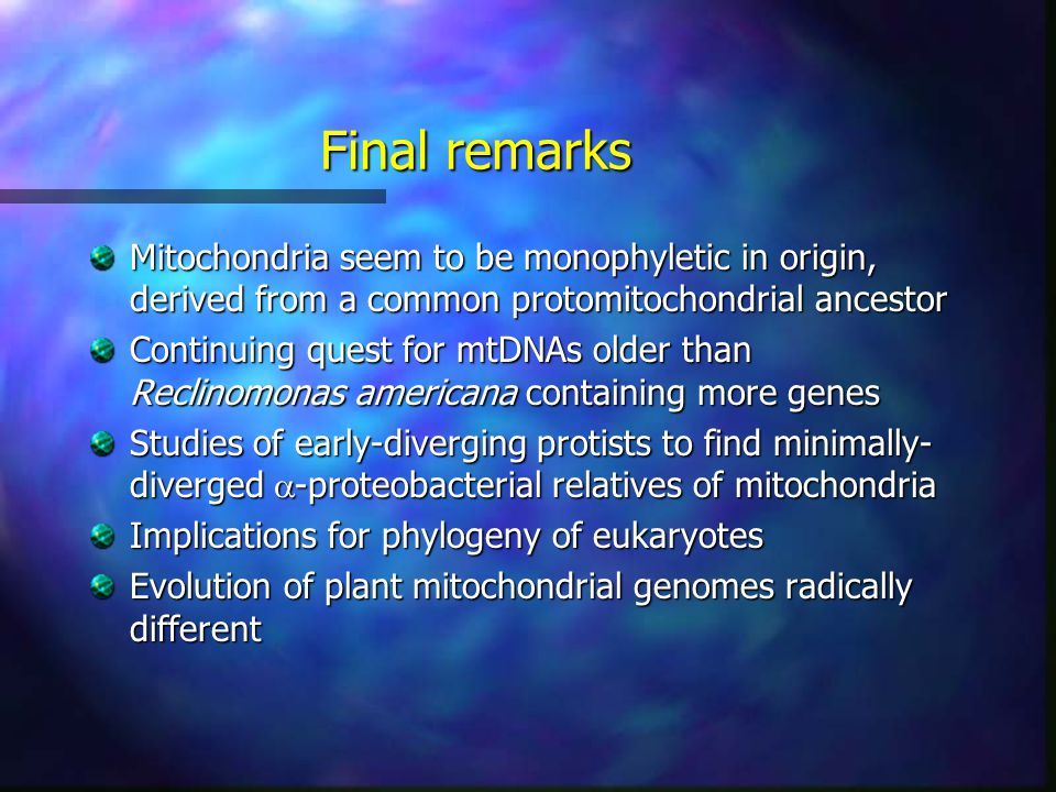 Final remarks Mitochondria seem to be monophyletic in origin, derived from a common protomitochondrial ancestor Continuing quest for mtDNAs older than Reclinomonas americana containing more genes Studies of early-diverging protists to find minimally- diverged  -proteobacterial relatives of mitochondria Implications for phylogeny of eukaryotes Evolution of plant mitochondrial genomes radically different