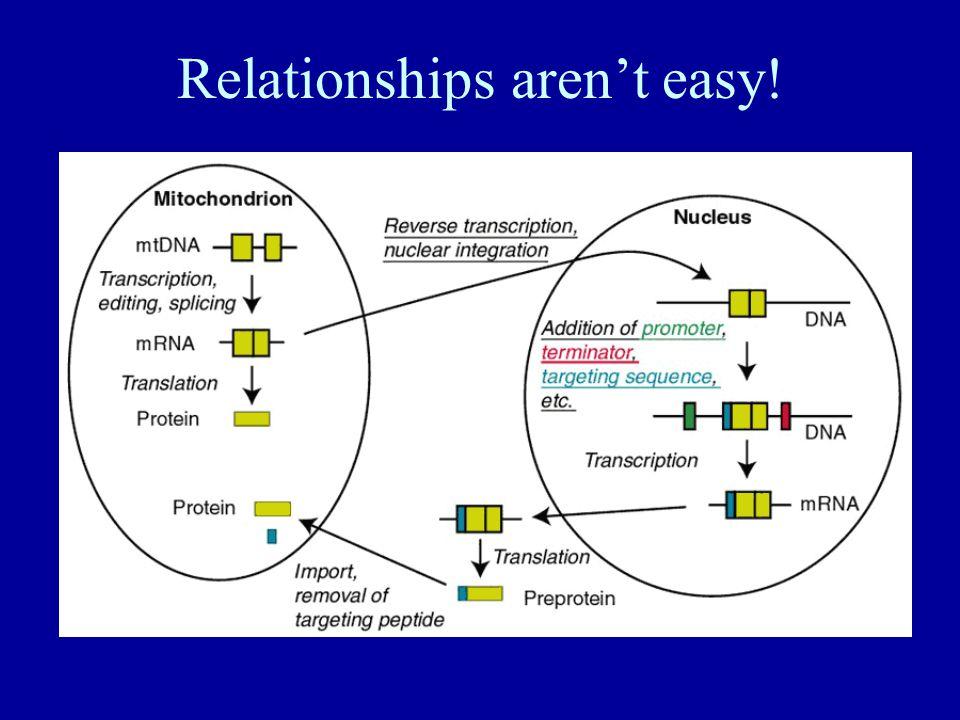 Relationships aren't easy!