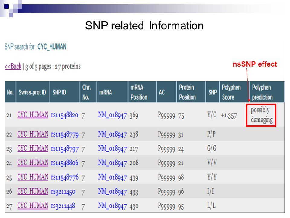 nsSNP effect SNP related Information