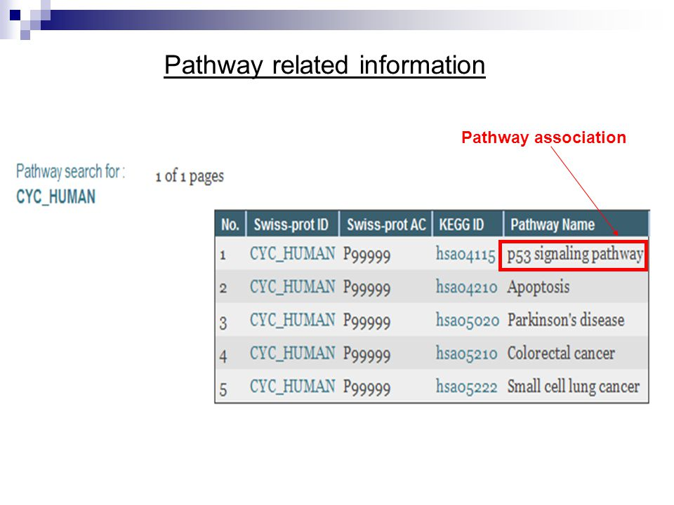 Pathway related information Pathway association