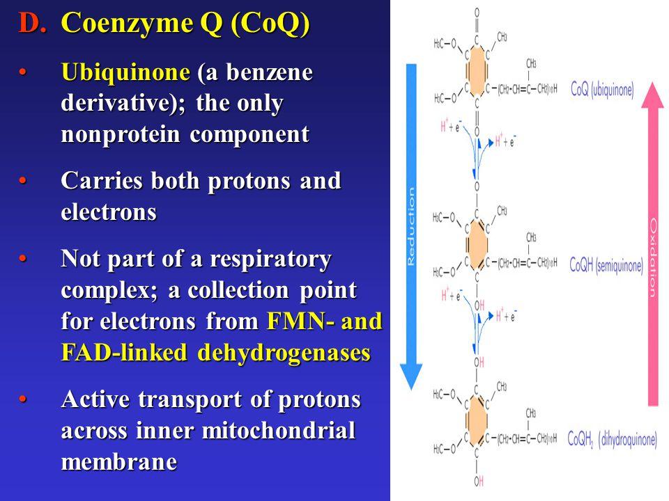 11 D.Coenzyme Q (CoQ) Ubiquinone (a benzene derivative); the only nonprotein componentUbiquinone (a benzene derivative); the only nonprotein component