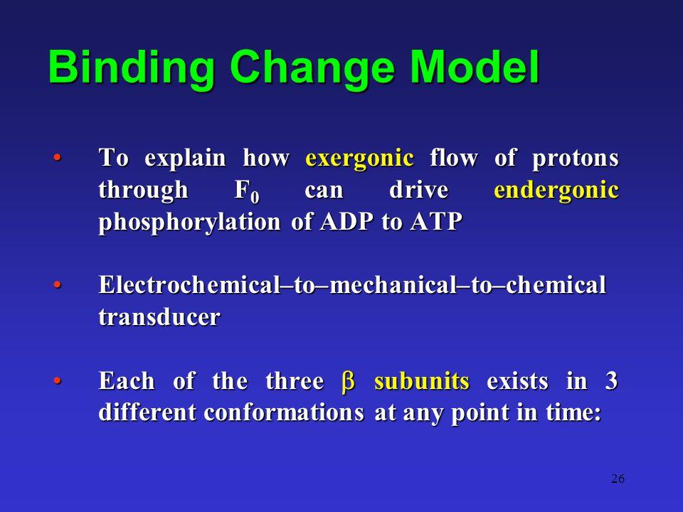 26 Binding Change Model To explain how exergonic flow of protons through F 0 can drive endergonic phosphorylation of ADP to ATPTo explain how exergoni