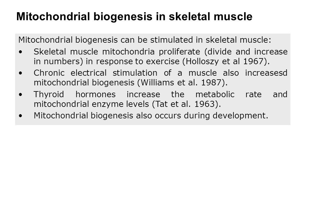 Mitochondrial biogenesis in skeletal muscle Mitochondrial biogenesis can be stimulated in skeletal muscle: Skeletal muscle mitochondria proliferate (divide and increase in numbers) in response to exercise (Holloszy et al 1967).