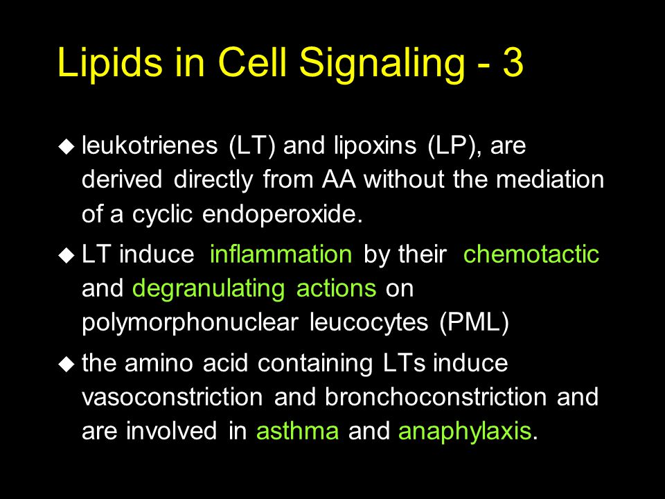Lipids in Cell Signaling - 3 u leukotrienes (LT) and lipoxins (LP), are derived directly from AA without the mediation of a cyclic endoperoxide. u LT