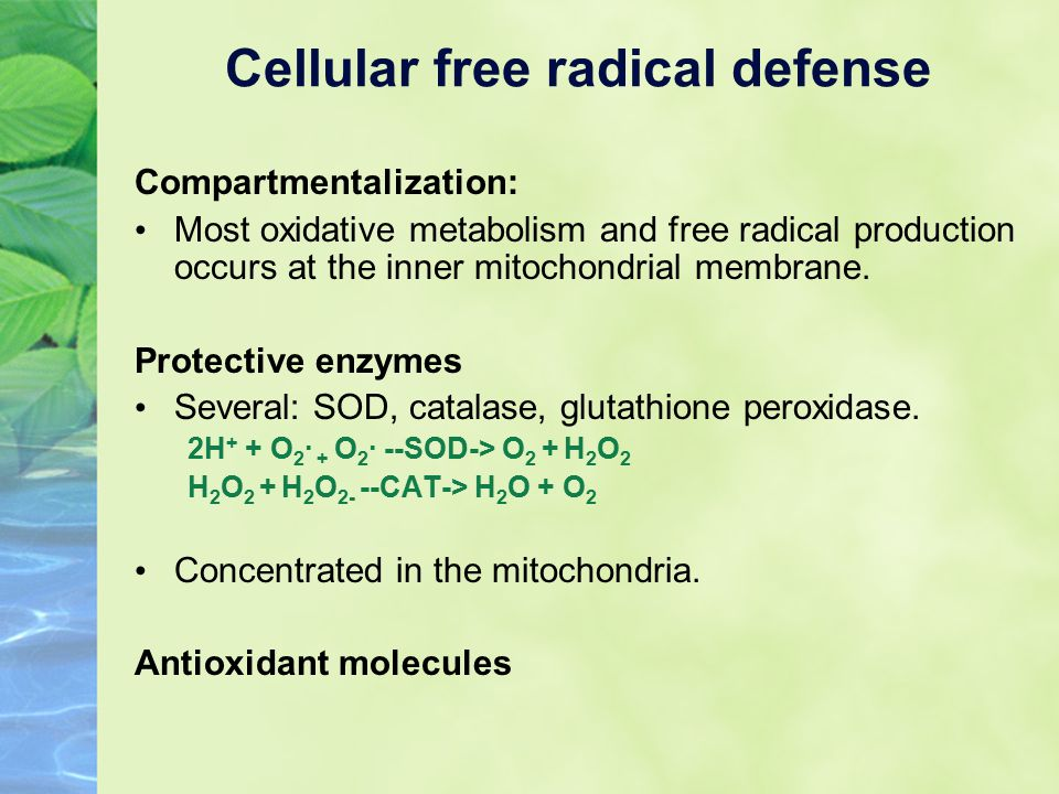 Compartmentalization: Most oxidative metabolism and free radical production occurs at the inner mitochondrial membrane.