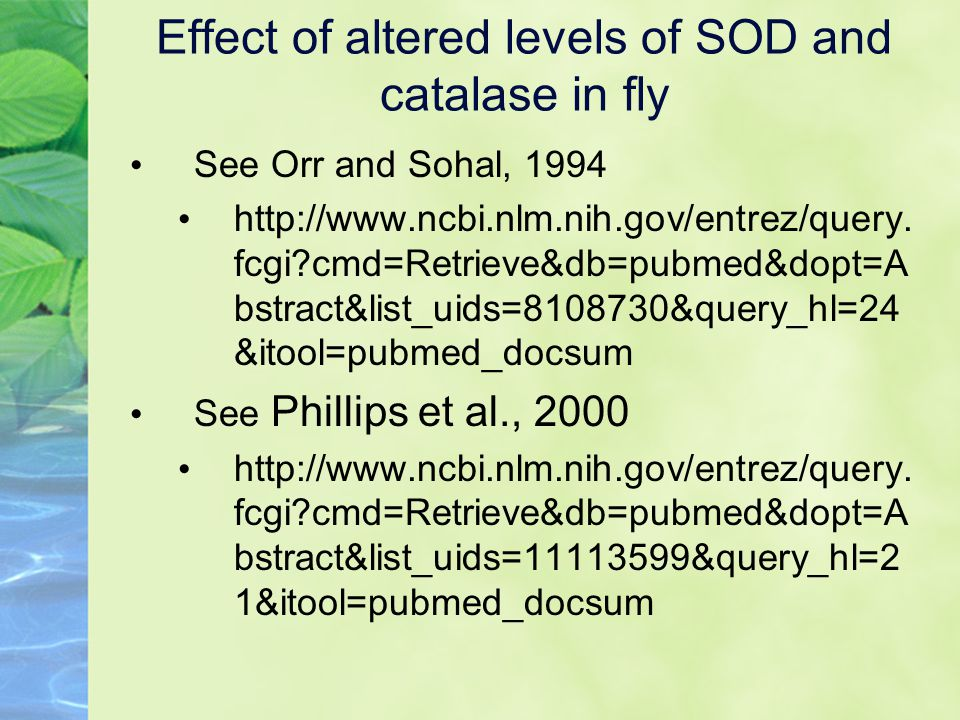 See Orr and Sohal, 1994 http://www.ncbi.nlm.nih.gov/entrez/query.