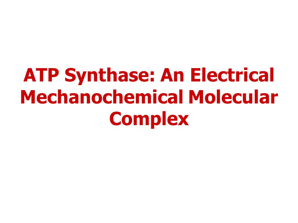 ATP Synthase: An Electrical Mechanochemical Molecular Complex