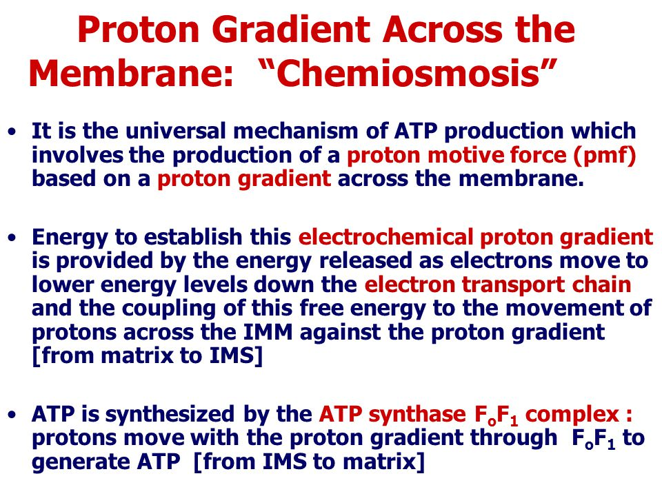 Proton Gradient Across the Membrane: Chemiosmosis It is the universal mechanism of ATP production which involves the production of a proton motive force (pmf) based on a proton gradient across the membrane.