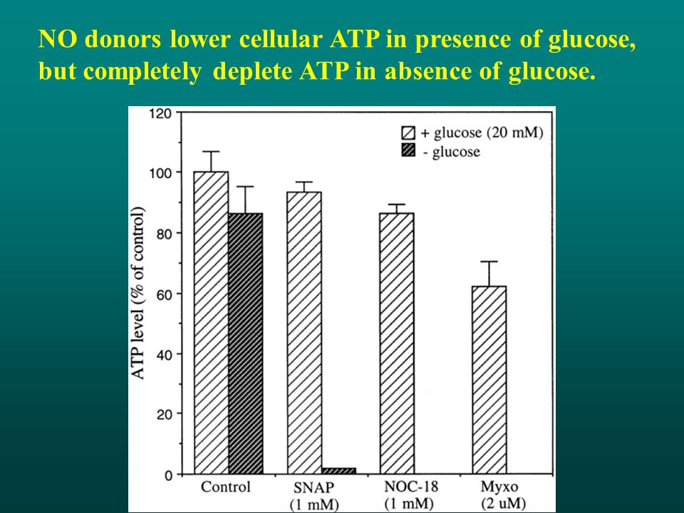 NO donors lower cellular ATP in presence of glucose, but completely deplete ATP in absence of glucose.
