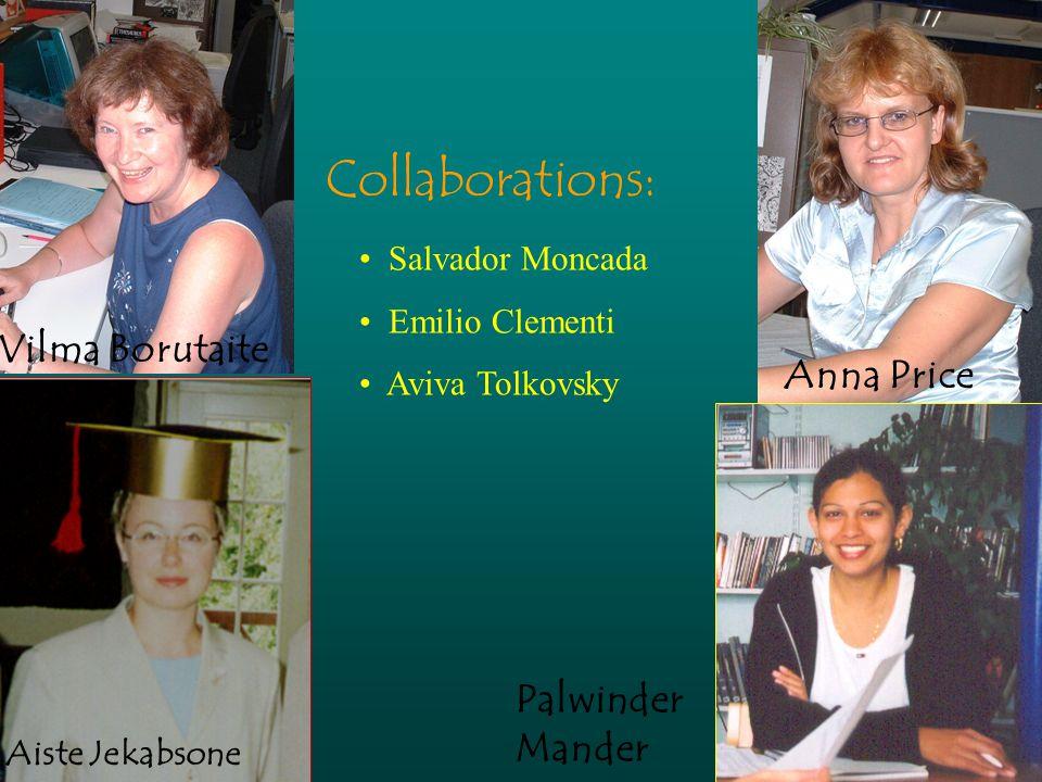 Anna Price Vilma Borutaite Collaborations: Salvador Moncada Emilio Clementi Aviva Tolkovsky Palwinder Mander Aiste Jekabsone