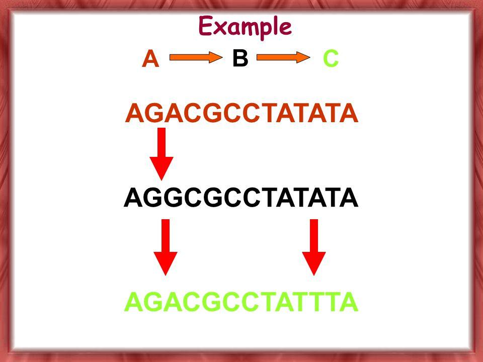 A B C AGACGCCTATATA AGGCGCCTATATA AGACGCCTATTTA Example