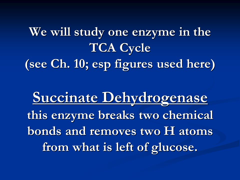 We will study one enzyme in the TCA Cycle (see Ch.