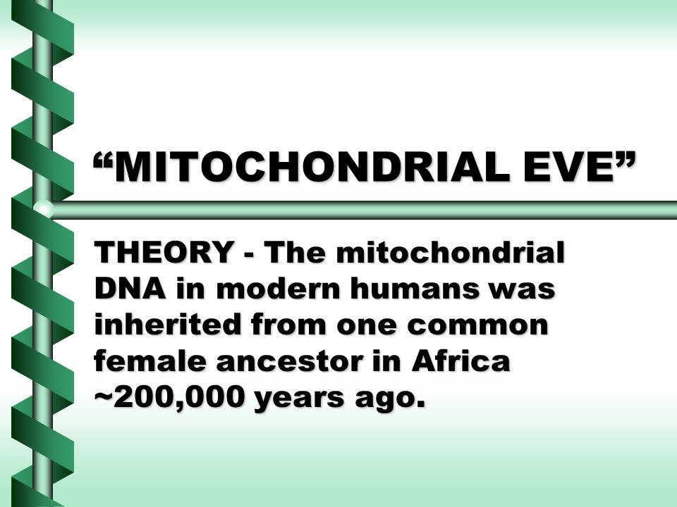 Possible Causes/Events for Mitochondrial Eve BottleneckBottleneck Random Genetic DriftRandom Genetic Drift ParthenogenesisParthenogenesis