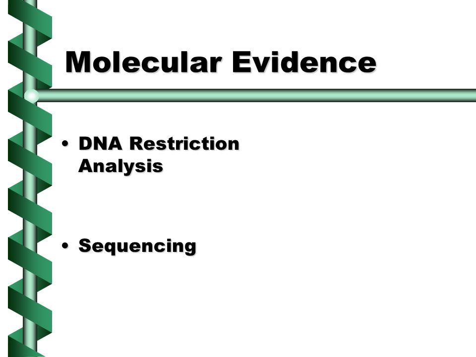 Molecular Evidence DNA Restriction AnalysisDNA Restriction Analysis SequencingSequencing