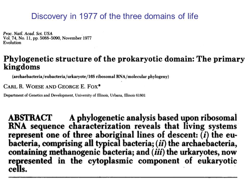 3 Discovery in 1977 of the three domains of life