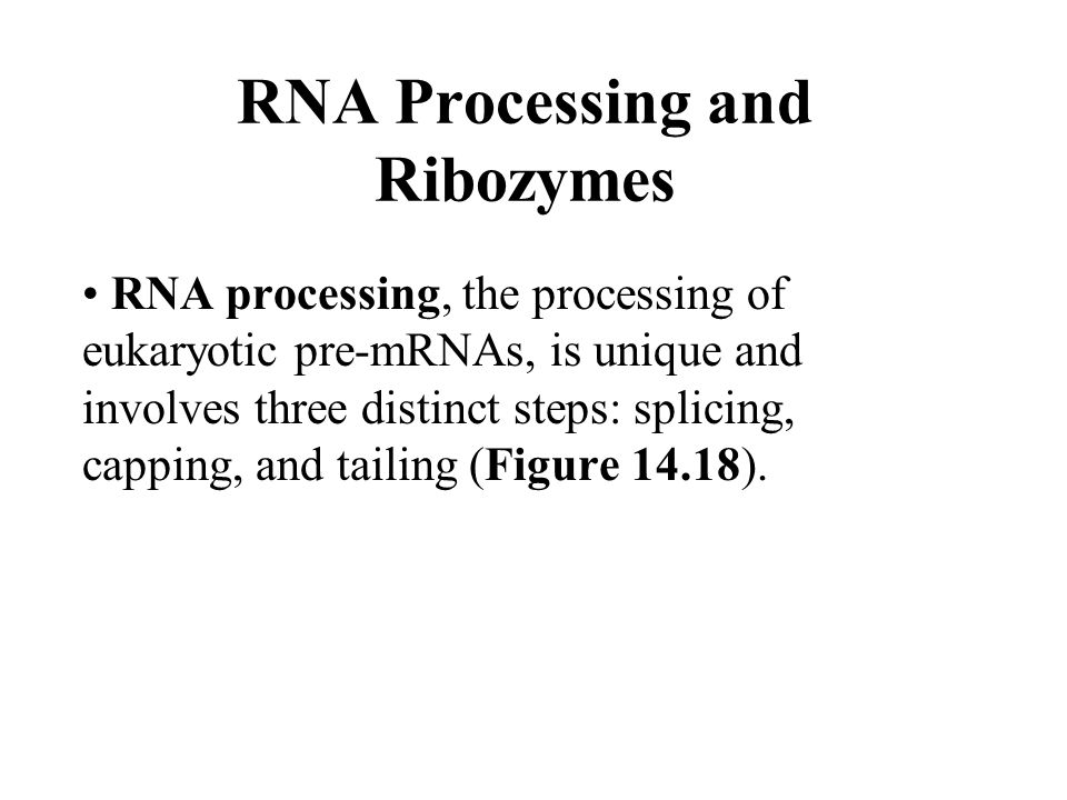 RNA Processing and Ribozymes RNA processing, the processing of eukaryotic pre-mRNAs, is unique and involves three distinct steps: splicing, capping, a