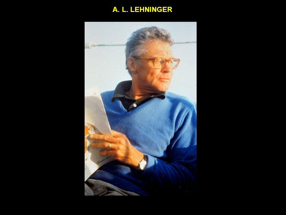 A. L. LEHNINGER