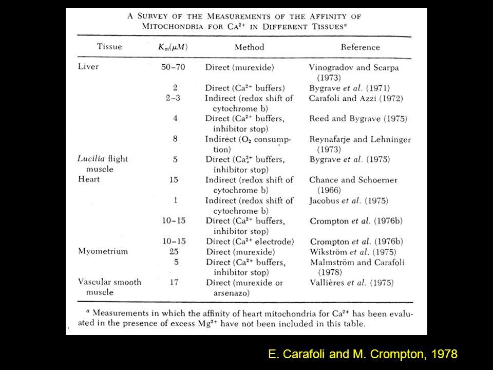 E. Carafoli and M. Crompton, 1978