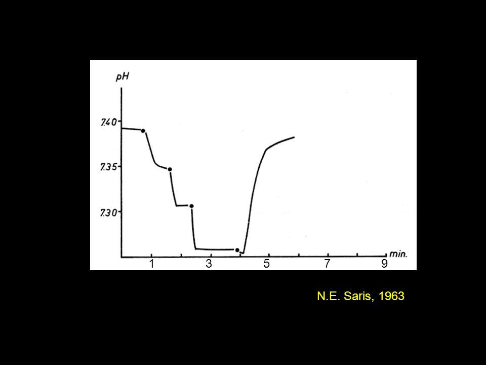 1 3 5 7 9 N.E. Saris, 1963