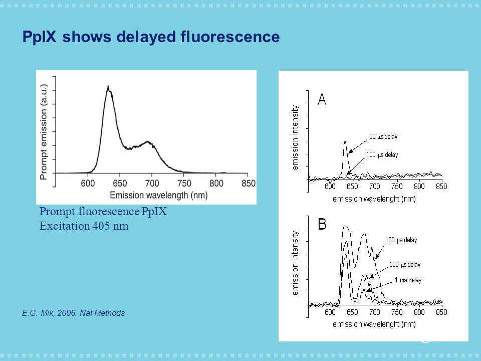 PpIX shows delayed fluorescence E.G. Mik, 2006.