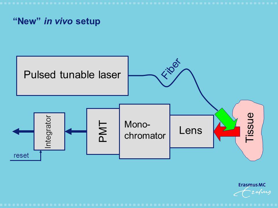 New in vivo setup Lens Mono- chromator PMT Integrator reset Pulsed tunable laser Fiber Tissue