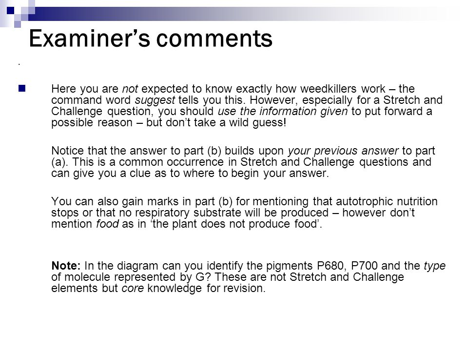 Examiner's comments.