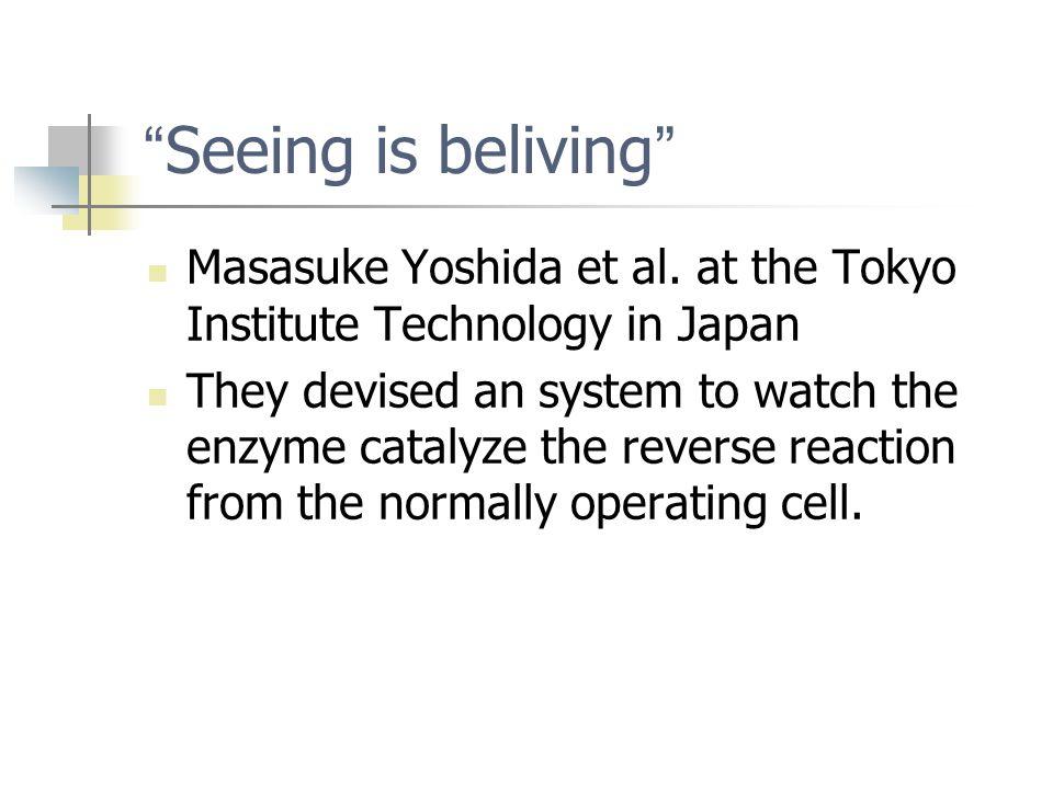 Seeing is beliving Masasuke Yoshida et al.