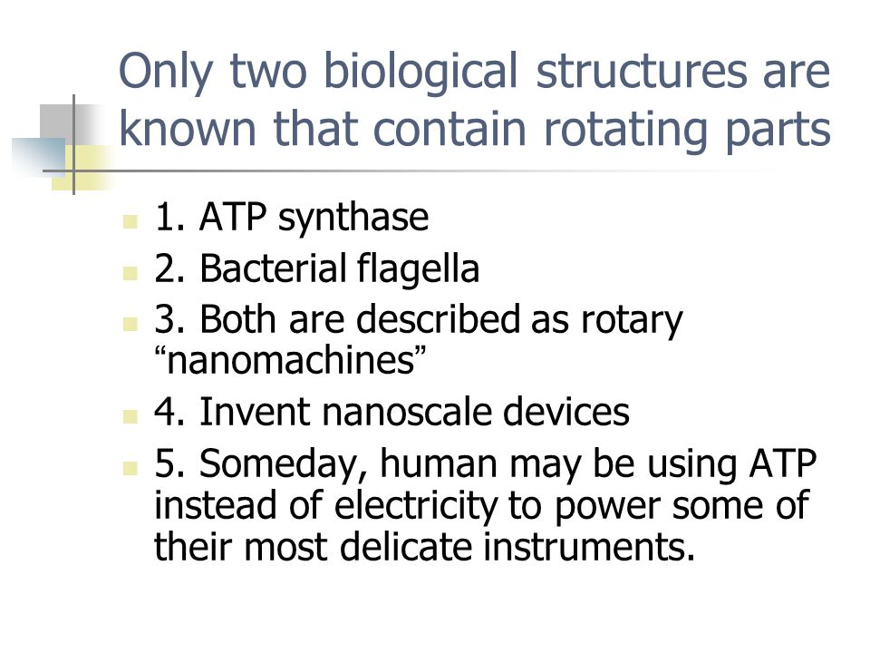 "Only two biological structures are known that contain rotating parts 1. ATP synthase 2. Bacterial flagella 3. Both are described as rotary "" nanomachi"